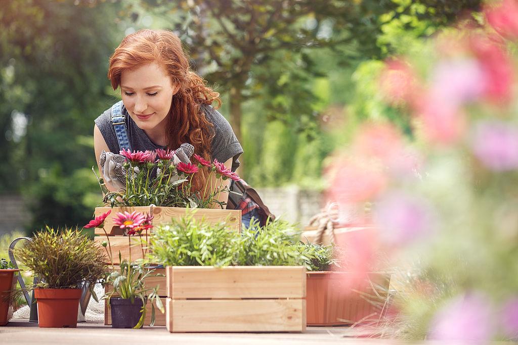 Gärtnerin gestaltet Gartenanlage