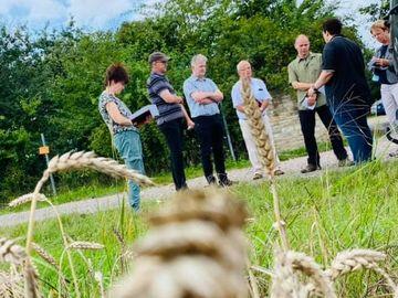 Sieben Personen unterhalten sich auf einem Feldweg. Im Hintergrund sind Büsche.