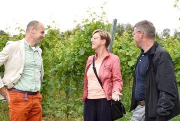 Besuch des Weingutes Zahn - Staatssekretär Weil im Gespräch mit zwei Personen, im Hintergrund Weinreben. Alle Lachen.