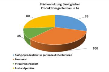 Flächennutzung ökologischer Produktionsgartenbau in ha