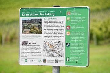 Besuch des Weingutes Zahn - Informationstafel zur Weinlage des Kaatschener Dachsberges