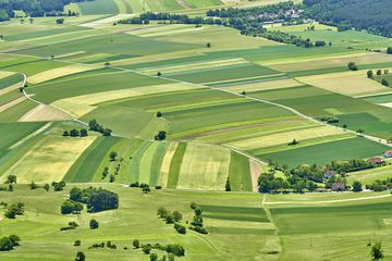 Landwirtschaftliche Nutzflächen