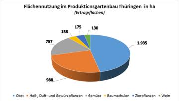 Flächennutzung im Produktionsgartenbau Thüringen in ha