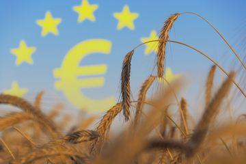 Agrarsubventionen