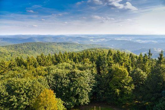 Thüringer Wald: Blick vom Adlersberg-Turm