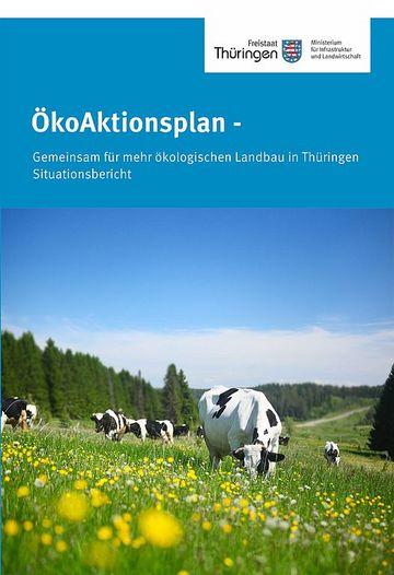 Deckblatt ÖkoAktionsplan Situationsbericht
