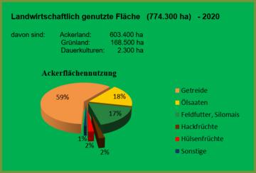 Nutzung der Ackerfläche in Thüringen 2020, Angaben in Prozent (Quelle: Bodennutzungshaupterhebung 2020 des Thüringer Landesamtes für Statistik)