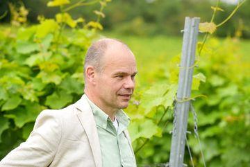 Besuch des Weingutes Zahn - Portrait im Seitenprofil von Staatssekretär Weil, im Hintergrund Blätter von Weinreben