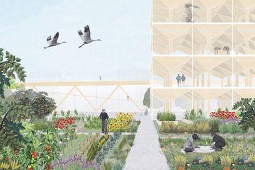 Visualisierung Projekt Holzbaufeld in Gehren