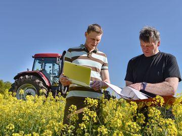 Fachberater und Landwirt im Rapsfeld