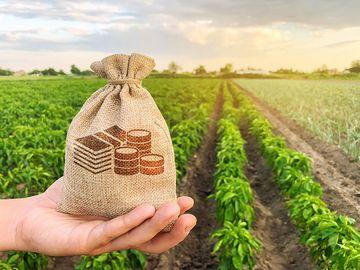 Der Landwirt hält ein Geldsäckchen in der Hand. Im Hintergrund Felder.