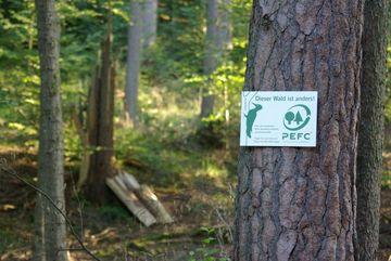 PEFC-zertifizierter Wald (Foto: TMIL)