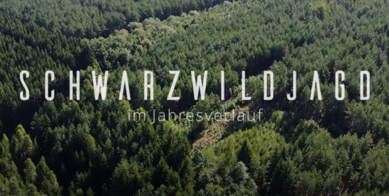 Titelbild für Video Schwarzwild